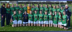 St. Louis Ladies Bow Out in All-Ireland Semi-Final